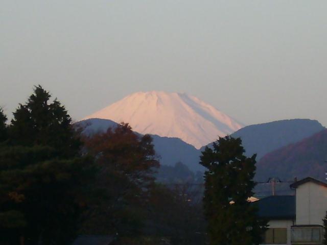白富士14