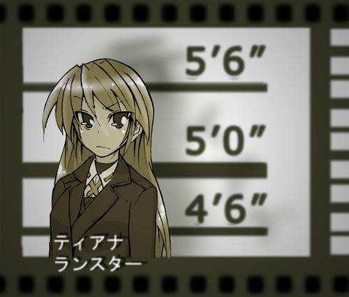 室井慎次・・・ティアナ・ランスター