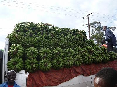 バナナの山@カンパラ