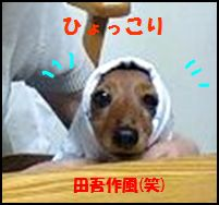 100114kannatagosaku