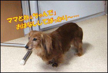 100516kanna②