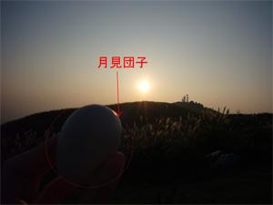 1003nikki-F.jpg