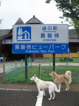裏磐梯道の駅_1