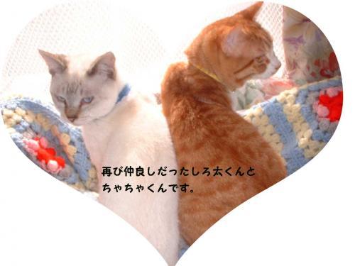 縺暦シ・■繧ダconvert_20100713224152