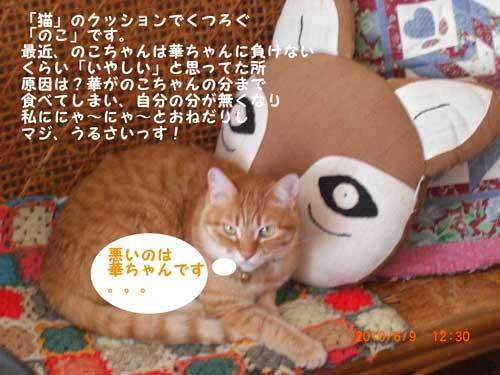 CIMG2021_20100622101815.jpg