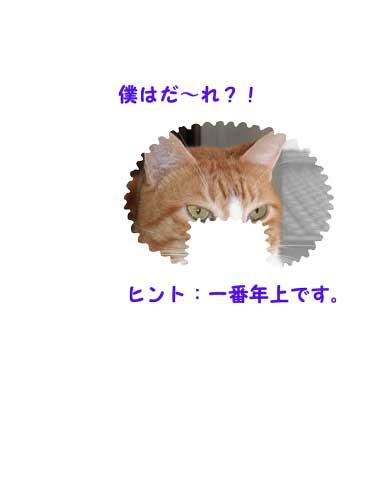 CIMG2315.jpg