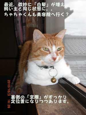 CIMG2315_20101017135635.jpg