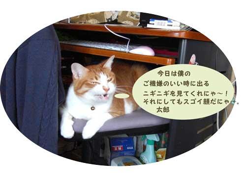 DSCF0001533_20100510230544.jpg
