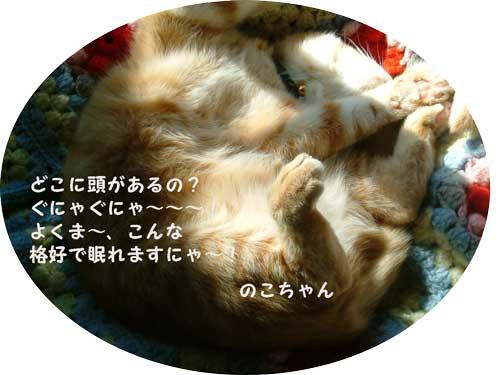 DSCF0001_20100506231409.jpg
