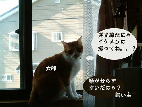 DSCF0017_20100519214648.jpg