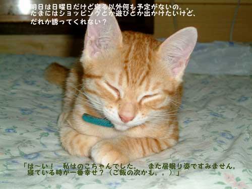 DSCF0018_20100306215932.jpg