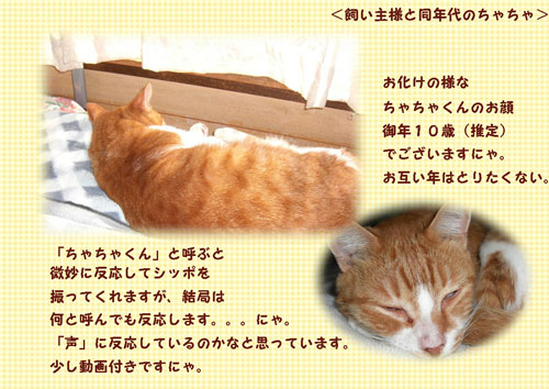 cha1_20111025213438.jpg