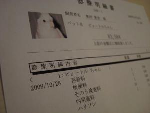 2009年10月29日その7