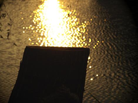 自然の灯火低画像.