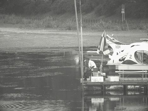 江津湖の釣人低画像