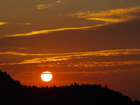 夕日低画像