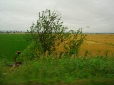2011071606