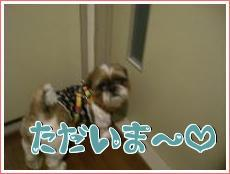 お散歩・9
