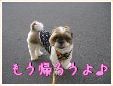 お散歩・7