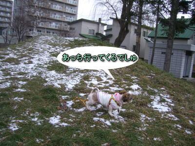 12・8散歩5
