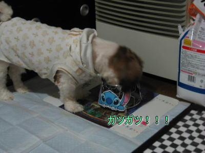 10.1.21お風呂4