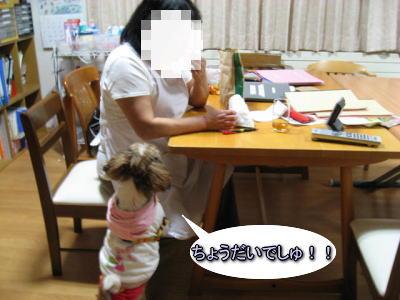 母の仕事場2