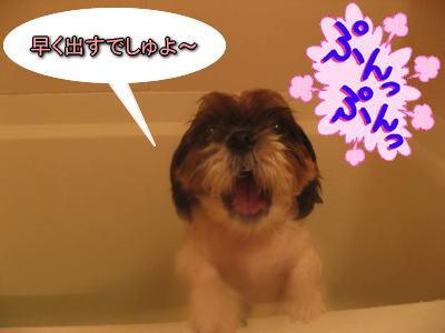 10・1・30お風呂4