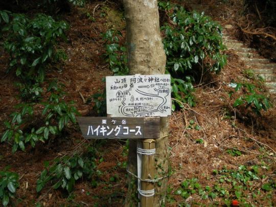 awagatake009.jpg
