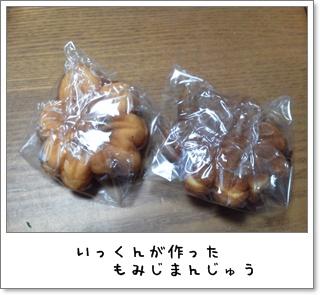 2011_0520_183158.jpg
