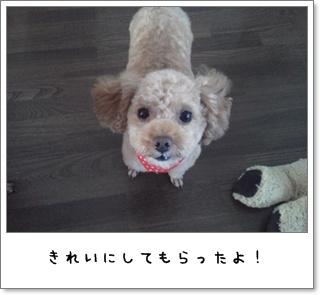 2011_0830_152330.jpg