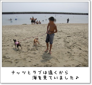 2012_0730_135052.jpg