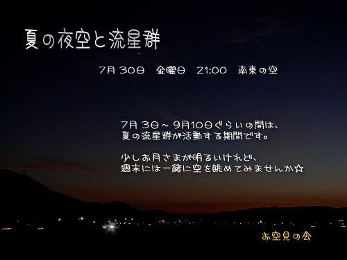 2010 7 30 夏の夜空と流星群