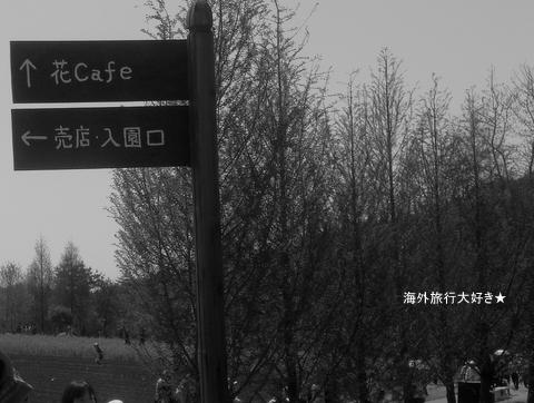CIMG9838.jpg