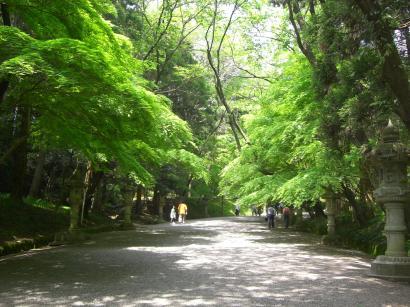 参道香取神宮