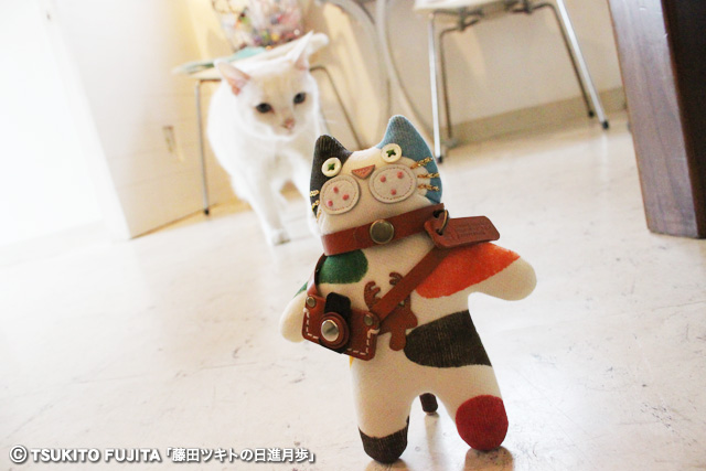 SHIKAZO_IMG_7795.jpg