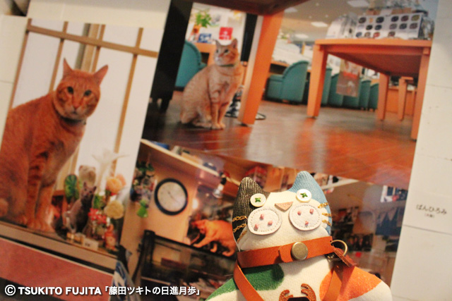 SHIKAZO_IMG_7817.jpg