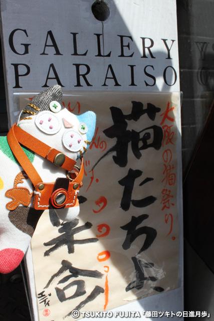 SHIKAZO_IMG_8734.jpg