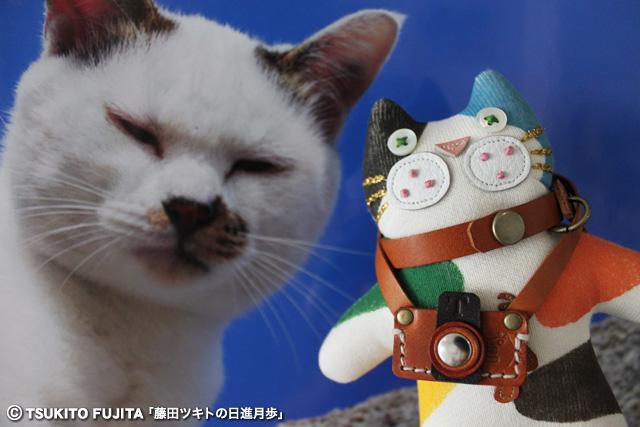 SHIKAZO_IMG_8743.jpg