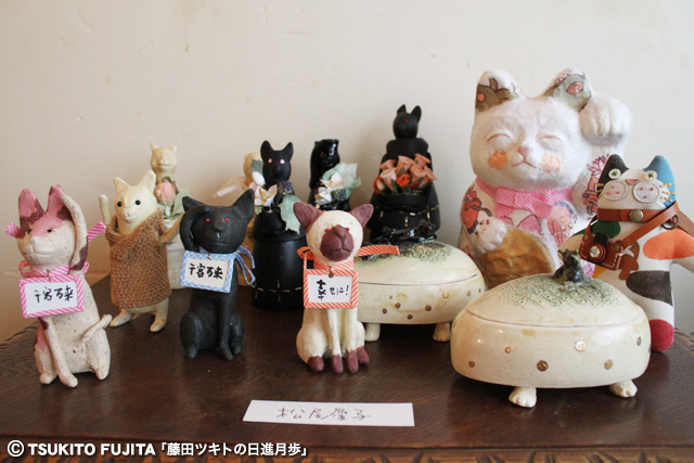 SHIKAZO_IMG_8805.jpg