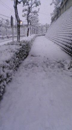 201102積雪1