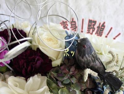 2009_10_10_n9.jpg