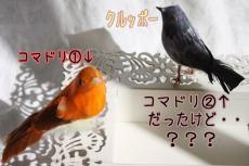 2009_10_10e.jpg