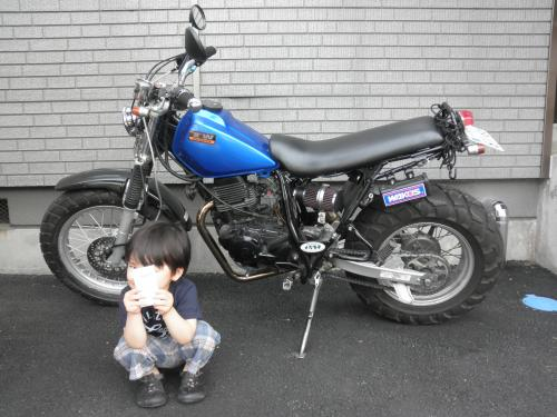P5090346_convert_20100512184752-1.jpg