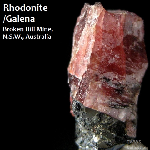 バラ輝石&方鉛鉱_オーストラリア1