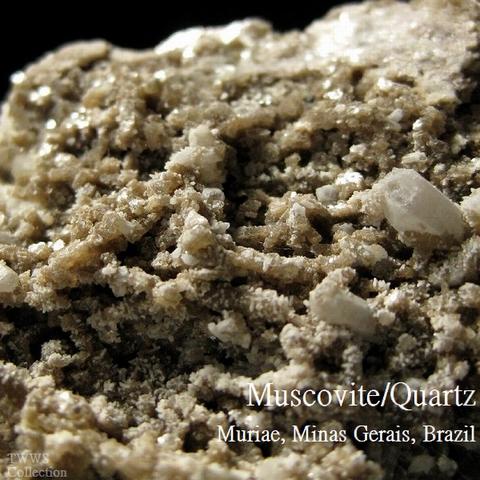白雲母&水晶_ブラジル1