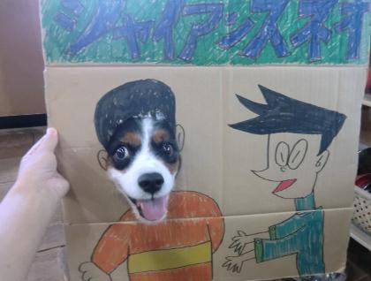 CIMG2012_20110809133627.jpg