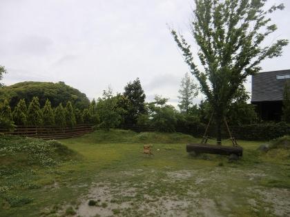 CIMG8949_20110511151659.jpg