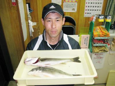 20110515kouchi.jpg
