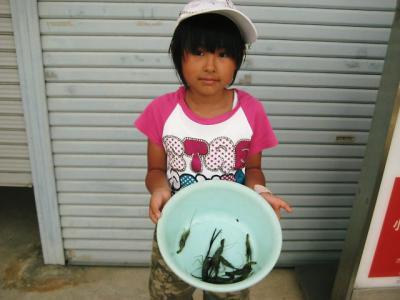 20110625moriwaki.jpg