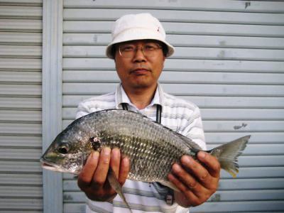 20110625takayama.jpg